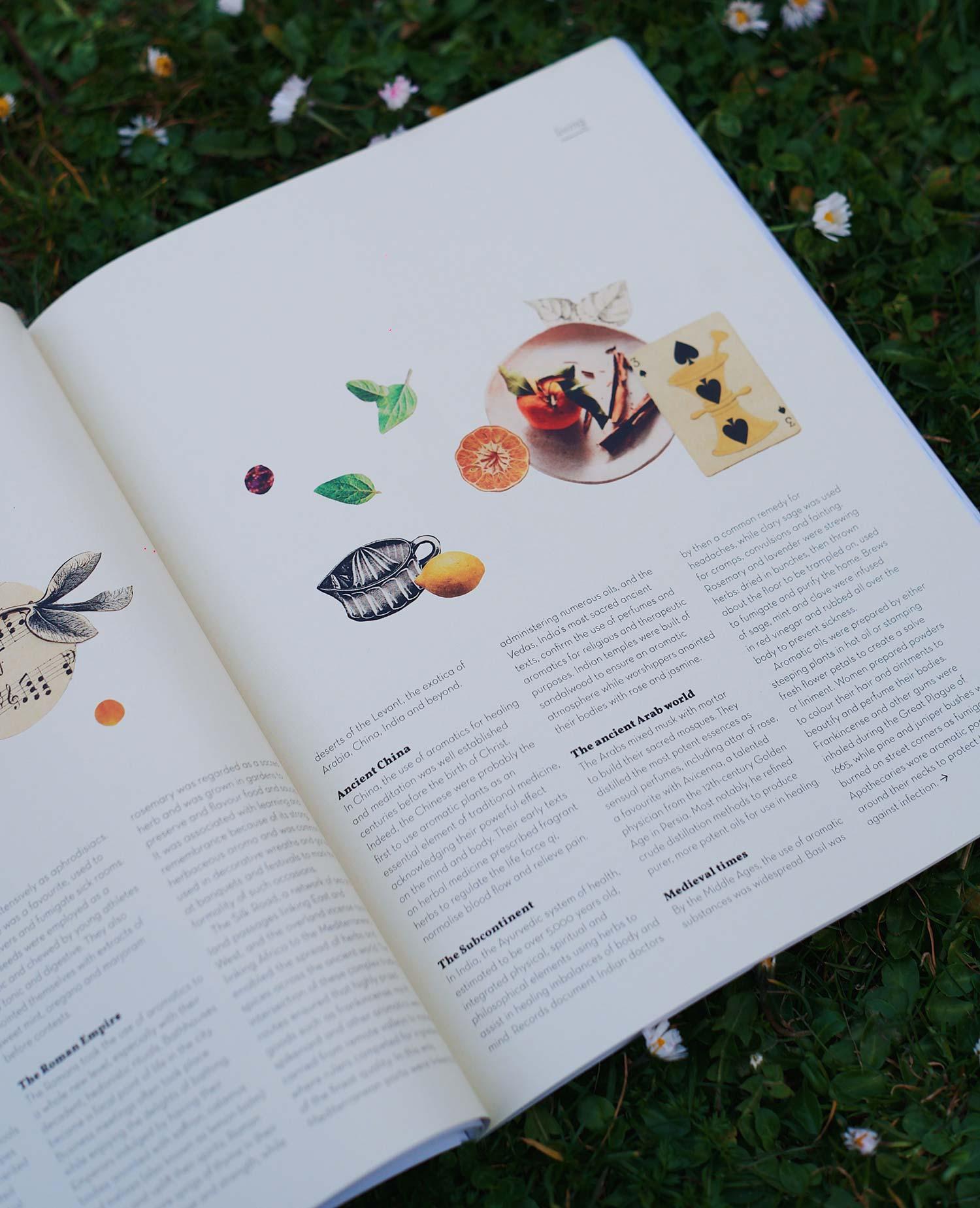 Oh magazine abierta con fondo de hierba